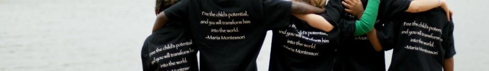 Hive_Freedom Montessori_38